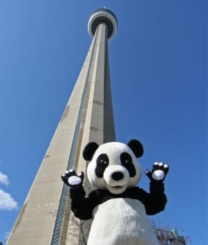 Laurentian SETAC Climbs for Nature (WWF CN Tower Climb)
