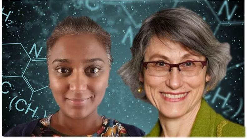 Spotlight on Mentors: Miriam Diamond, Professor at University of Toronto
